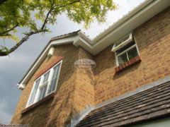 White fascia and tongue and groove soffit with square guttering
